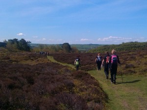 Walking on Stanton Moor