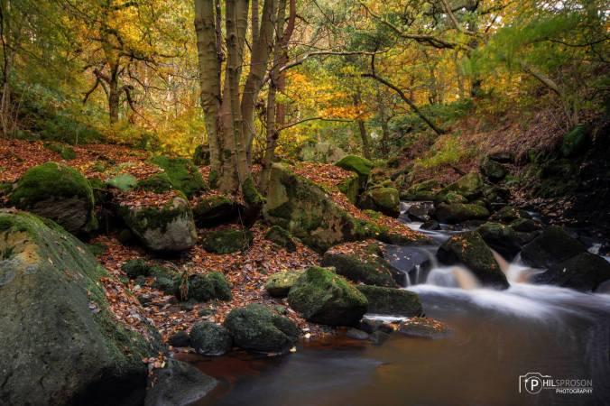 visit-peak-district-padley-gorge-derbyshire-