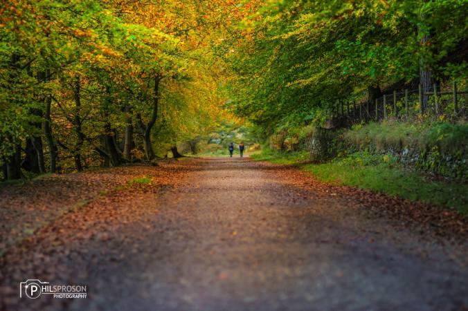 visit-peak-district-phil-sproson-derwent-path-derbyshire-walking-countryside-walking-autumn