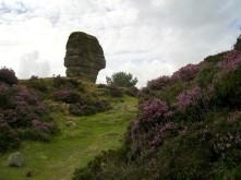 The Cork Stone